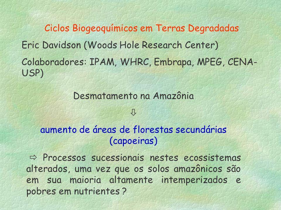 Ciclos Biogeoquímicos em Terras Degradadas Eric Davidson (Woods Hole Research Center) Colaboradores: IPAM, WHRC, Embrapa, MPEG, CENA- USP) Desmatament