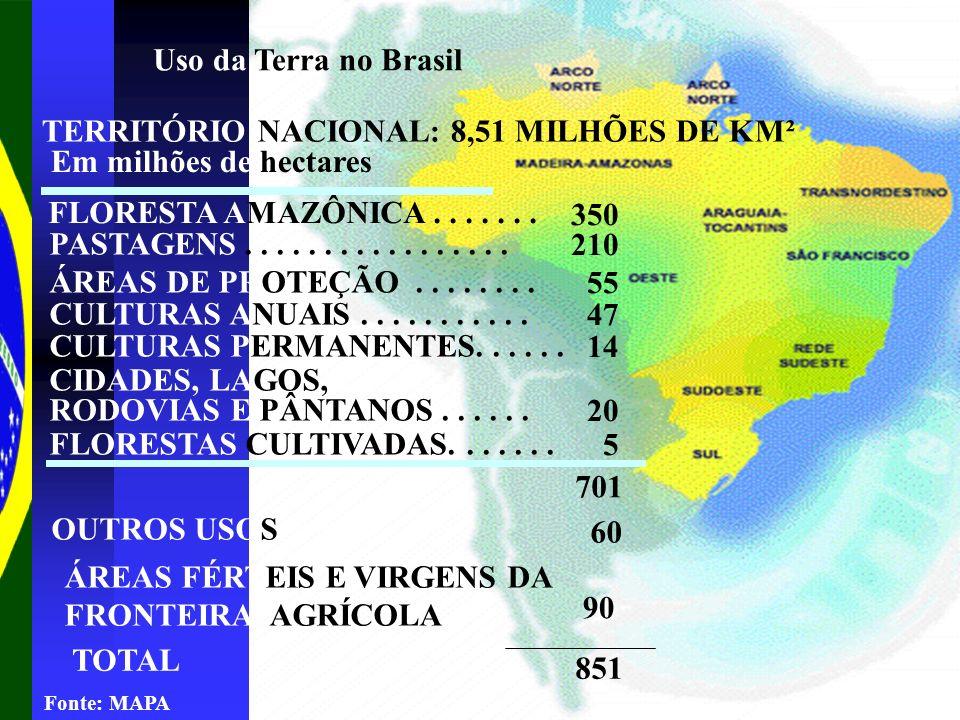 Uso da Terra no Brasil TERRITÓRIO NACIONAL: 8,51 MILHÕES DE KM² Em milhões de hectares FLORESTA AMAZÔNICA....... 350 PASTAGENS................. 210 ÁR
