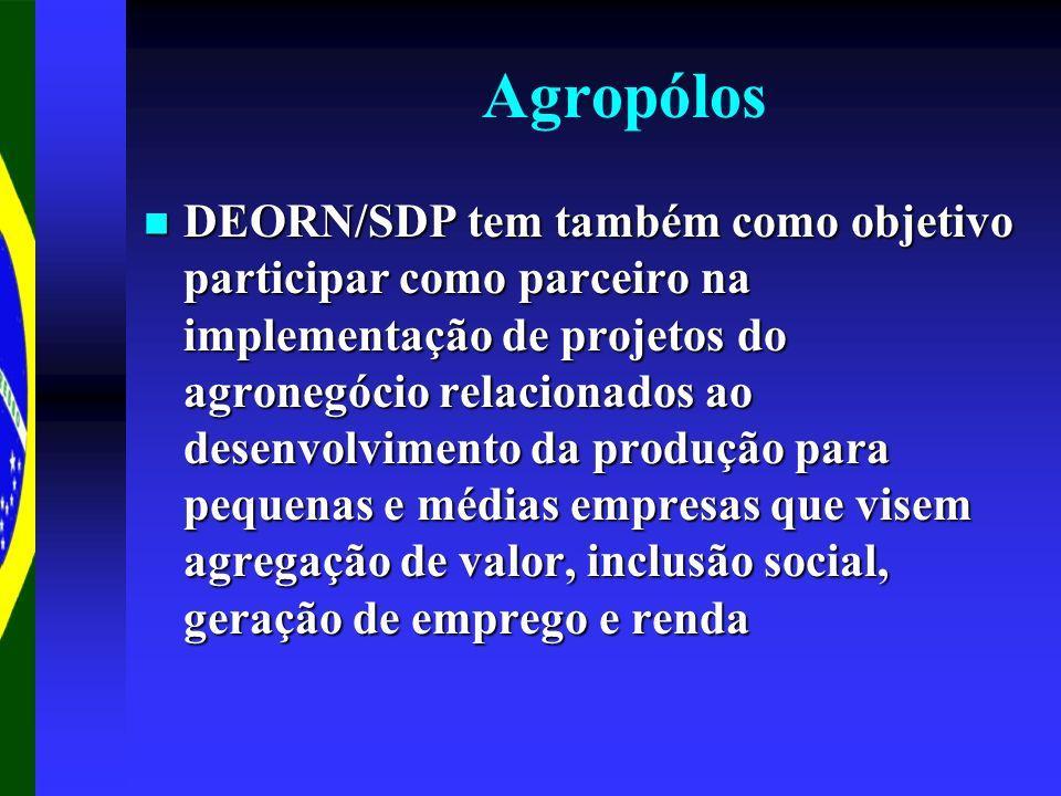 Agropólos DEORN/SDP tem também como objetivo participar como parceiro na implementação de projetos do agronegócio relacionados ao desenvolvimento da p