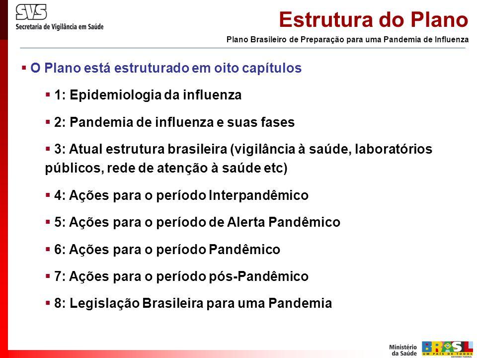 O Plano está estruturado em oito capítulos 1: Epidemiologia da influenza 2: Pandemia de influenza e suas fases 3: Atual estrutura brasileira (vigilânc