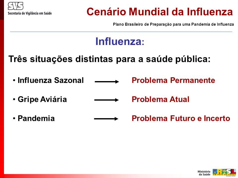 Cenário Mundial da Influenza Influenza sazonal - Brasil Vacinação > 60 anos - Abril 2005 - 86% Vigilância Sentinela da Influenza Plano Brasileiro de Preparação para uma Pandemia de Influenza AnoUF (n°)US (n°) 200023 2001711 20021223 20031223 20041631 20052146 20062758 Implantação da Vigilância