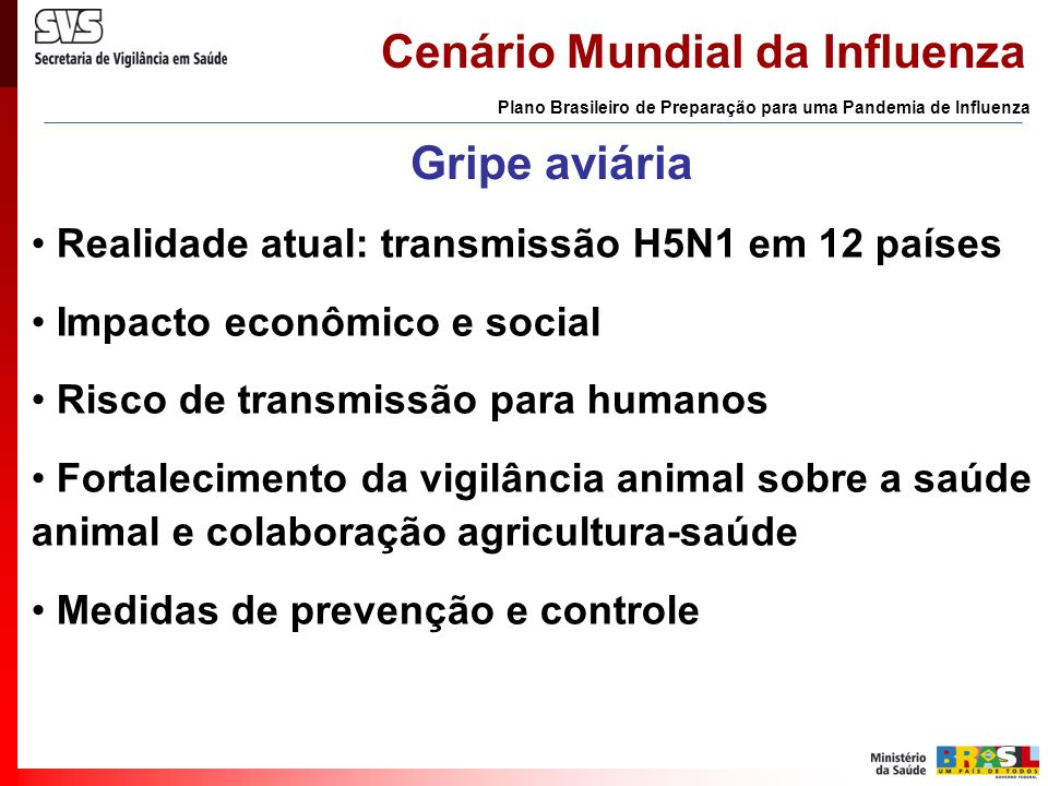Cenário Mundial da Influenza Plano Brasileiro de Preparação para uma Pandemia de Influenza Gripe aviária Realidade atual: transmissão H5N1 em 12 paíse