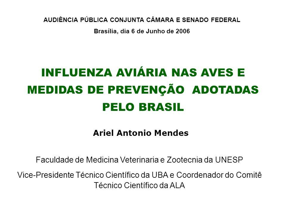 INFLUENZA AVIÁRIA NAS AVES E MEDIDAS DE PREVENÇÃO ADOTADAS PELO BRASIL Ariel Antonio Mendes Faculdade de Medicina Veterinaria e Zootecnia da UNESP Vic