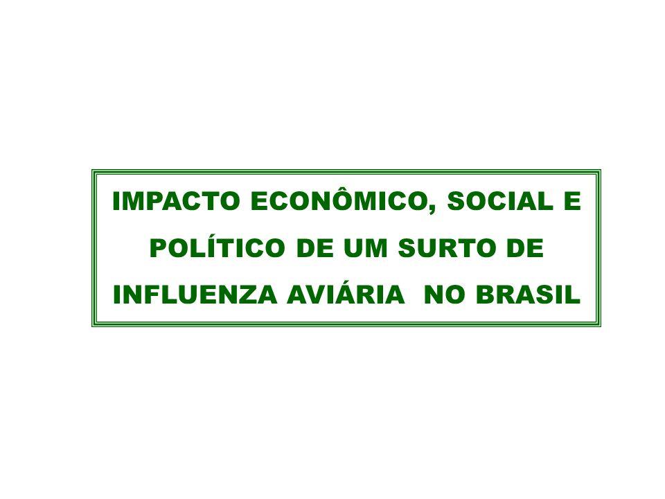 IMPACTO ECONÔMICO, SOCIAL E POLÍTICO DE UM SURTO DE INFLUENZA AVIÁRIA NO BRASIL