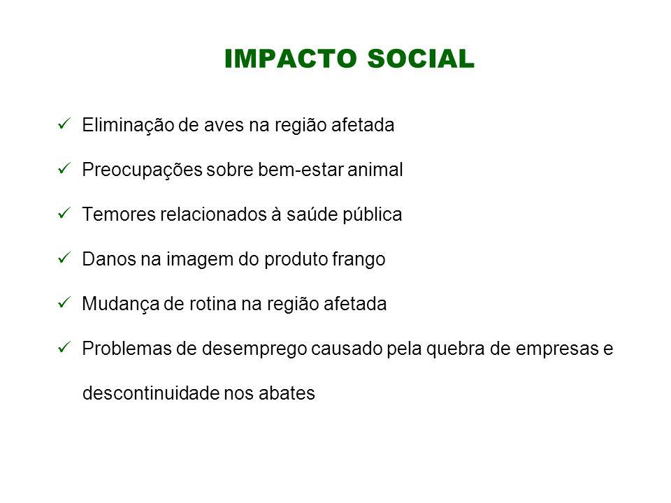 Eliminação de aves na região afetada Preocupações sobre bem-estar animal Temores relacionados à saúde pública Danos na imagem do produto frango Mudanç