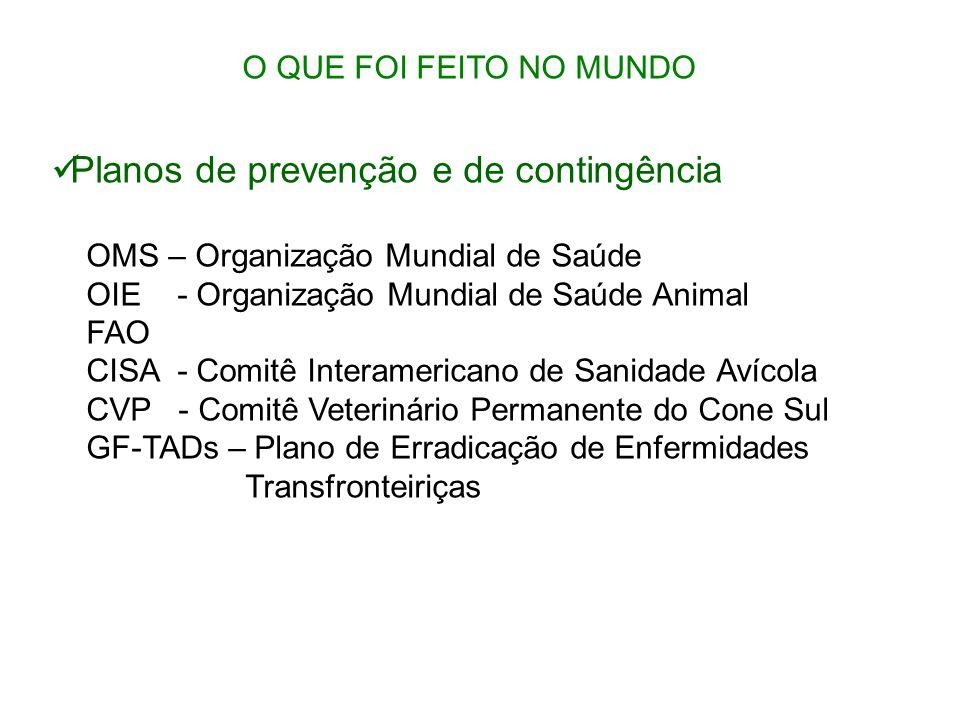O QUE FOI FEITO NO MUNDO Planos de prevenção e de contingência OMS – Organização Mundial de Saúde OIE - Organização Mundial de Saúde Animal FAO CISA -