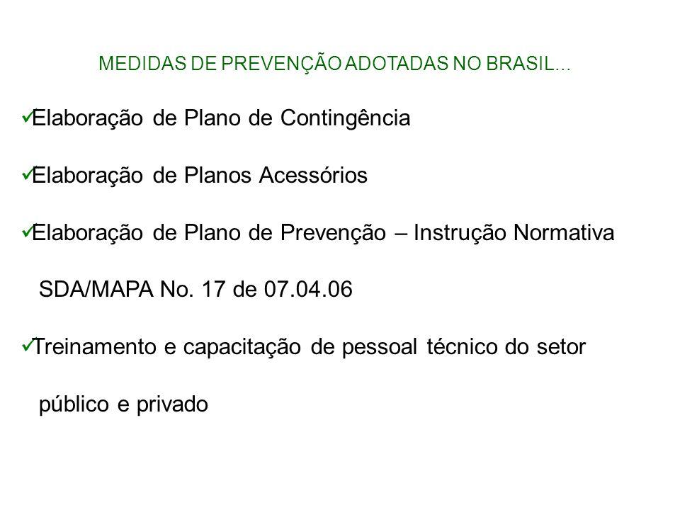 MEDIDAS DE PREVENÇÃO ADOTADAS NO BRASIL... Elaboração de Plano de Contingência Elaboração de Planos Acessórios Elaboração de Plano de Prevenção – Inst