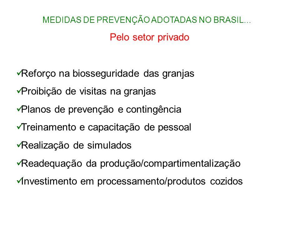 MEDIDAS DE PREVENÇÃO ADOTADAS NO BRASIL... Pelo setor privado Reforço na biosseguridade das granjas Proibição de visitas na granjas Planos de prevençã