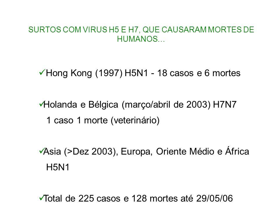 Hong Kong (1997) H5N1 - 18 casos e 6 mortes Holanda e Bélgica (março/abril de 2003) H7N7 1 caso 1 morte (veterinário) Asia (>Dez 2003), Europa, Orient