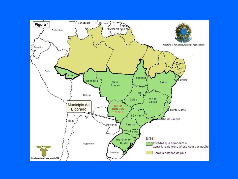 Cada País Membro se compromete a declarar as doenças dos animais que detecta em seu território.