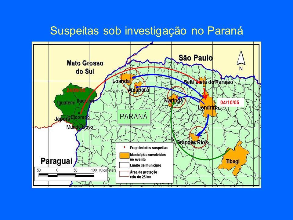 Suspeitas sob investigação no Paraná 04/10/05 24/09/05