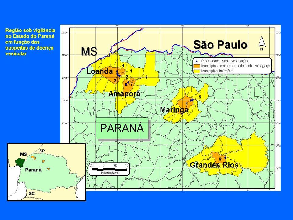 Medidas Adotadas no Paraná Interdição das propriedades diretamente envolvidas; Investigação de contatos; Colheita de amostras; Inspeção e interdição de 150 propriedades no raio de 3 Km das propriedades suspeitas com 23.242 animais sob vigilância; Inspeção e interdição de 522 propriedades no raio 10 Km 65.859 animais estão sob vigilância ; 23 veículos envolvidos nas ações; 16 médicos veterinários e 28 auxiliares; 19 postos móveis de fiscalização; Notificação, a todos os Estados, do trânsito de animais susceptíveis oriundos do Estado do Paraná nos últimos 60 dias anteriores ao início das investigações.