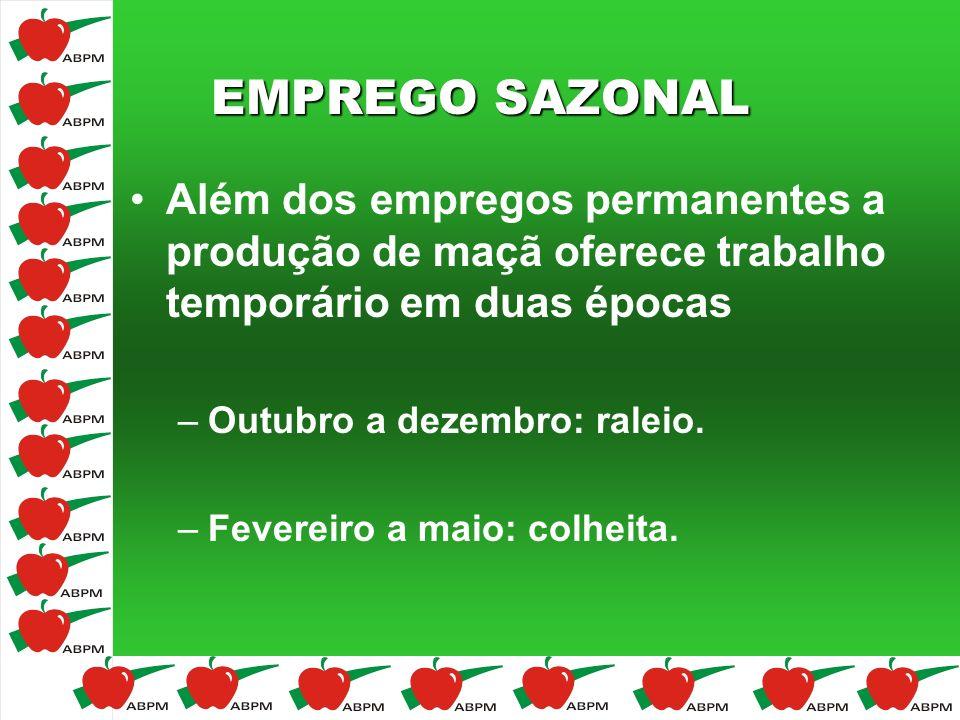 EMPREGO SAZONAL Além dos empregos permanentes a produção de maçã oferece trabalho temporário em duas épocas –Outubro a dezembro: raleio. –Fevereiro a