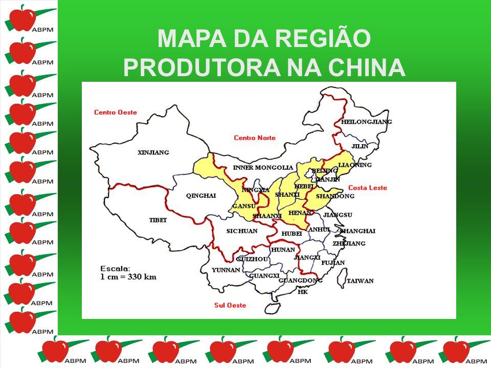 MAPA DA REGIÃO PRODUTORA NA CHINA