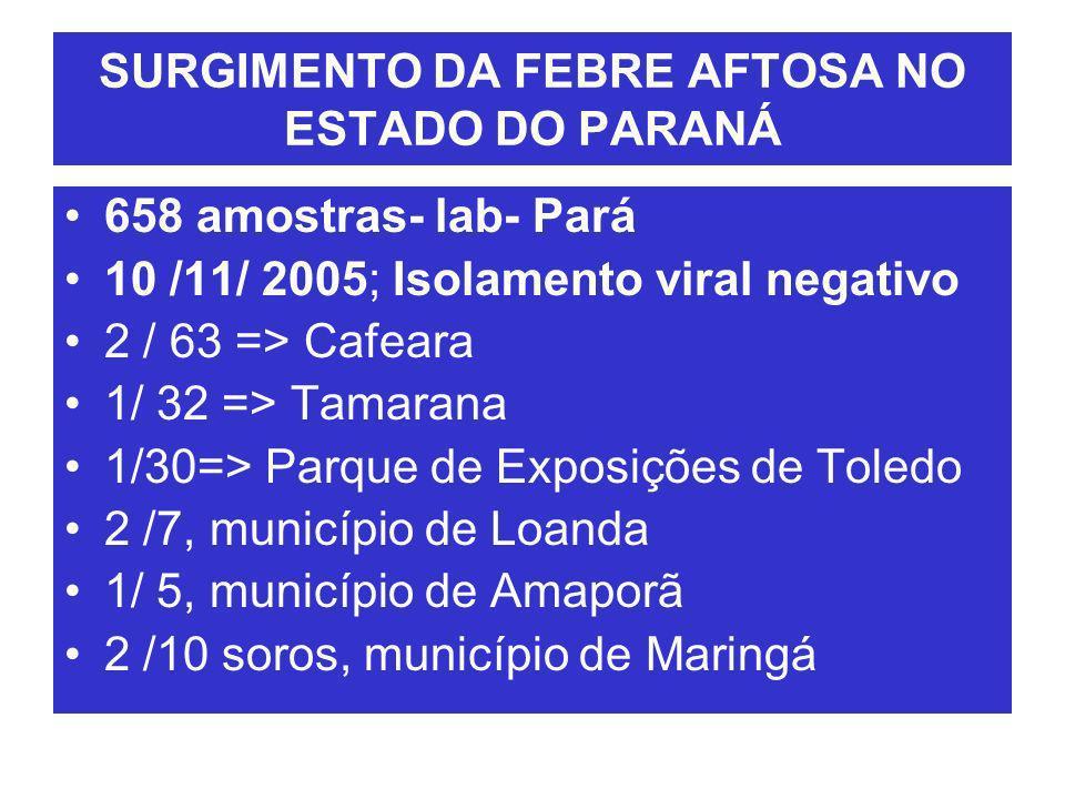 SURGIMENTO DA FEBRE AFTOSA NO ESTADO DO PARANÁ 2/12- São Sebastião da Amoreira, 209 5-12- lab-RS resultados Sorologia: ELISA 3ABC 22 % / EITB/ 50% 6/12- foco de Febre aftosa- Paraná