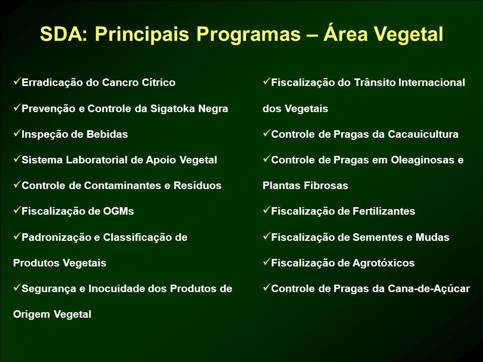 SDA: Principais Programas – Área Vegetal Erradicação do Cancro Cítrico Prevenção e Controle da Sigatoka Negra Inspeção de Bebidas Sistema Laboratorial