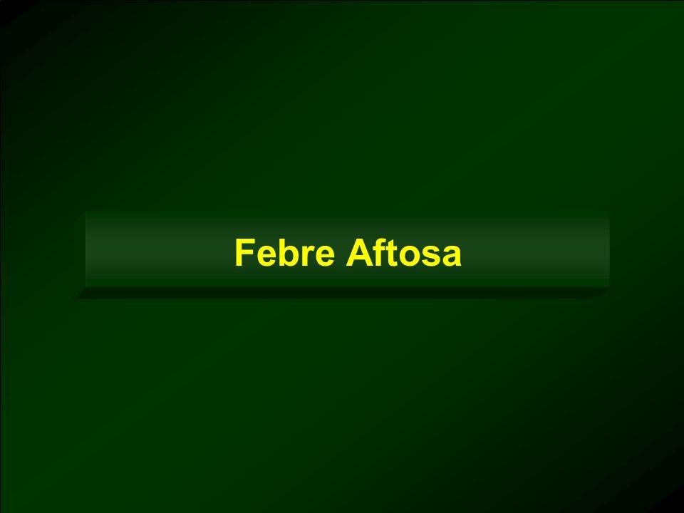 Febre Aftosa