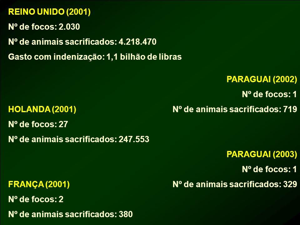 REINO UNIDO (2001) Nº de focos: 2.030 Nº de animais sacrificados: 4.218.470 Gasto com indenização: 1,1 bilhão de libras HOLANDA (2001) Nº de focos: 27
