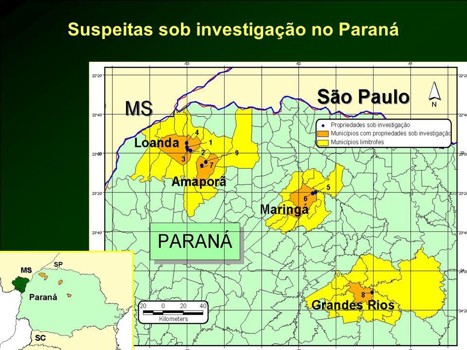 Suspeitas sob investigação no Paraná
