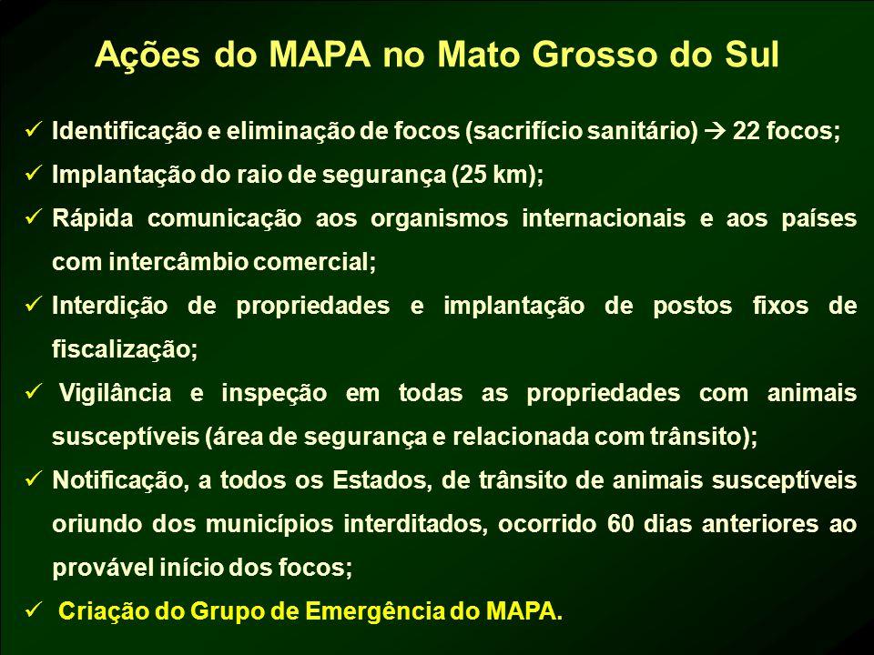 Ações do MAPA no Mato Grosso do Sul Identificação e eliminação de focos (sacrifício sanitário) 22 focos; Implantação do raio de segurança (25 km); Ráp