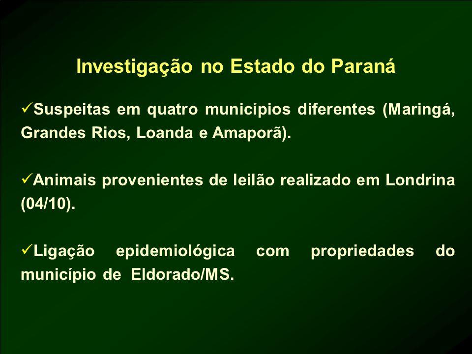Investigação no Estado do Paraná Suspeitas em quatro municípios diferentes (Maringá, Grandes Rios, Loanda e Amaporã). Animais provenientes de leilão r