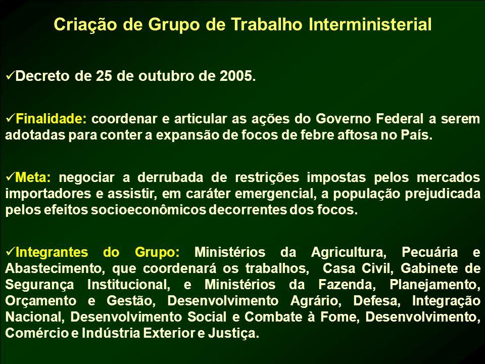 Criação de Grupo de Trabalho Interministerial Decreto de 25 de outubro de 2005. Finalidade: coordenar e articular as ações do Governo Federal a serem