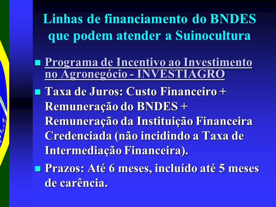 Linhas de financiamento do BNDES que podem atender a Suinocultura Programa de Incentivo ao Investimento no Agronegócio - INVESTIAGRO Programa de Incentivo ao Investimento no Agronegócio - INVESTIAGRO Programa de Incentivo ao Investimento no Agronegócio - INVESTIAGRO Programa de Incentivo ao Investimento no Agronegócio - INVESTIAGRO Taxa de Juros: Custo Financeiro + Remuneração do BNDES + Remuneração da Instituição Financeira Credenciada (não incidindo a Taxa de Intermediação Financeira).