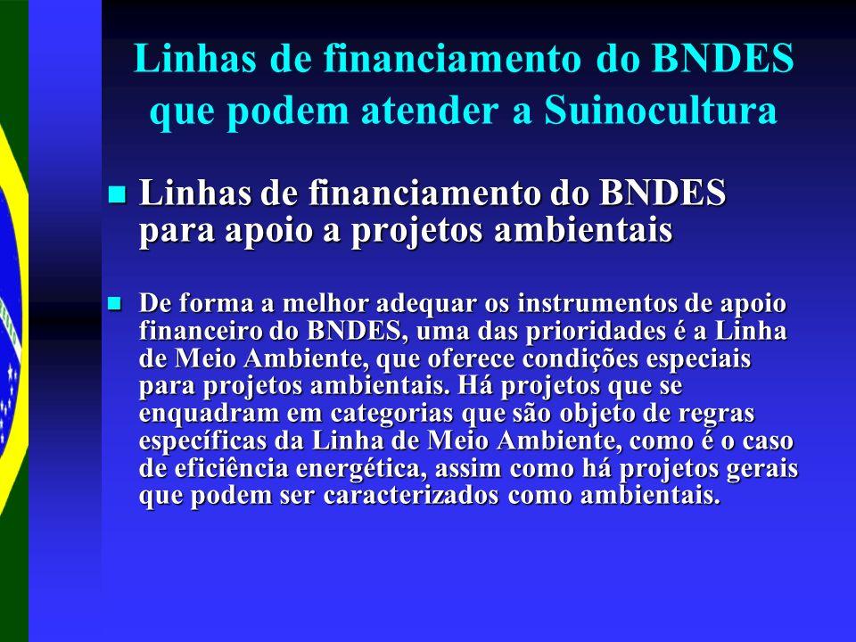 Linhas de financiamento do BNDES que podem atender a Suinocultura Linhas de financiamento do BNDES para apoio a projetos ambientais Linhas de financiamento do BNDES para apoio a projetos ambientais De forma a melhor adequar os instrumentos de apoio financeiro do BNDES, uma das prioridades é a Linha de Meio Ambiente, que oferece condições especiais para projetos ambientais.