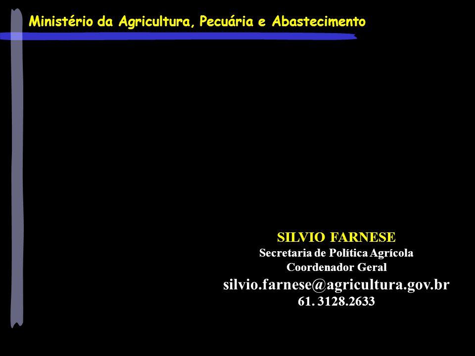 Ministério da Agricultura, Pecuária e Abastecimento SILVIO FARNESE Secretaria de Política Agrícola Coordenador Geral silvio.farnese@agricultura.gov.br