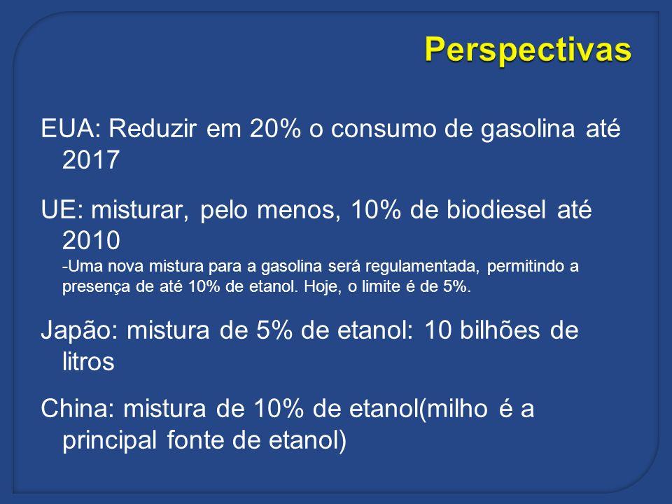 Perspectivas EUA: Reduzir em 20% o consumo de gasolina até 2017 UE: misturar, pelo menos, 10% de biodiesel até 2010 -Uma nova mistura para a gasolina