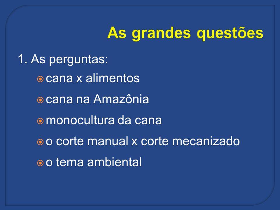 As grandes questões 1. As perguntas: cana x alimentos cana na Amazônia monocultura da cana o corte manual x corte mecanizado o tema ambiental