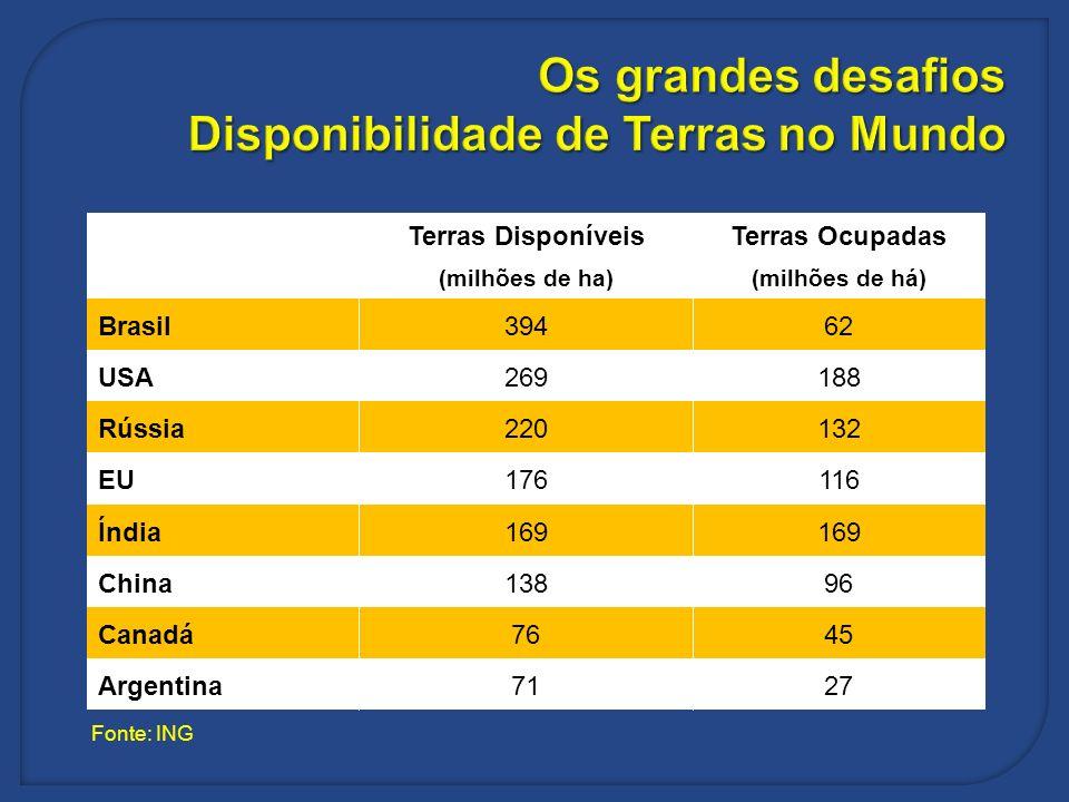 Os grandes desafios Disponibilidade de Terras no Mundo Terras DisponíveisTerras Ocupadas (milhões de ha)(milhões de há) Brasil39462 USA269188 Rússia22