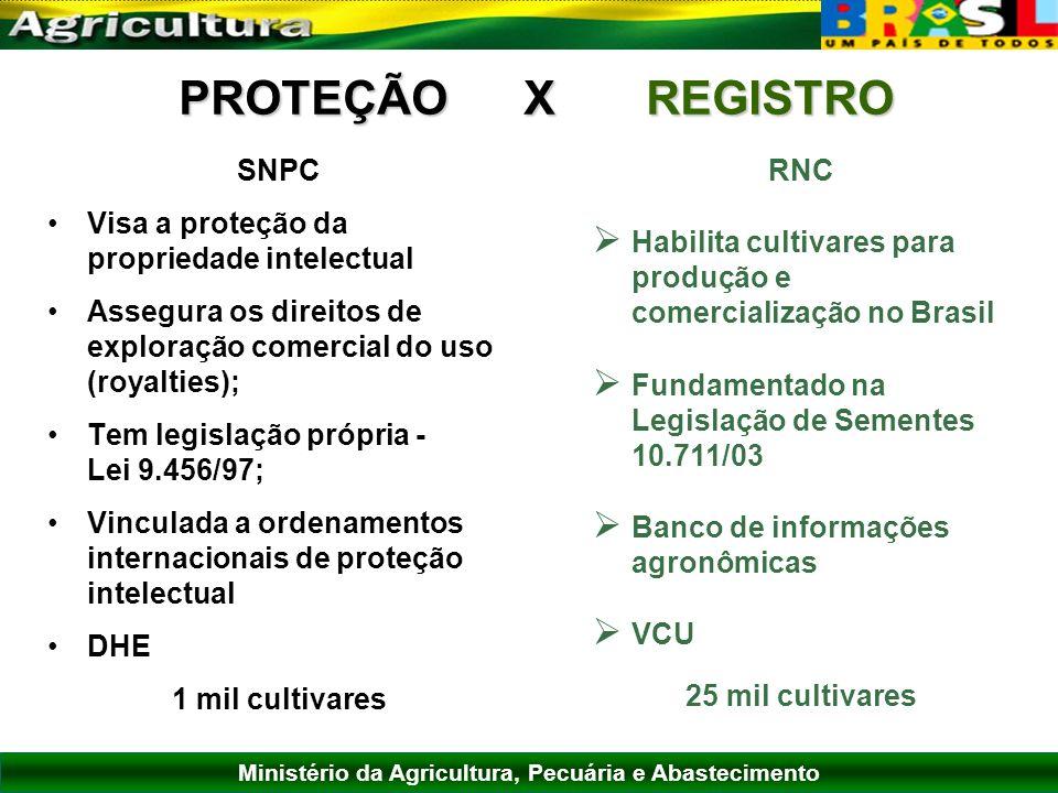 Ministério da Agricultura, Pecuária e Abastecimento PROTEÇÃO X REGISTRO SNPC Visa a proteção da propriedade intelectual Assegura os direitos de explor