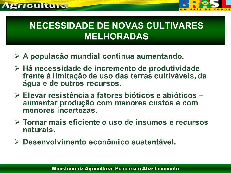 Ministério da Agricultura, Pecuária e Abastecimento NECESSIDADE DE NOVAS CULTIVARES MELHORADAS A população mundial continua aumentando. Há necessidade