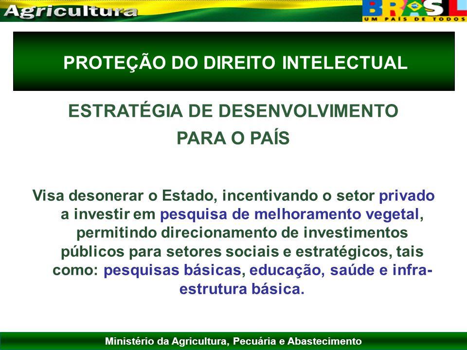 Ministério da Agricultura, Pecuária e Abastecimento PROTEÇÃO DO DIREITO INTELECTUAL ESTRATÉGIA DE DESENVOLVIMENTO PARA O PAÍS Visa desonerar o Estado,