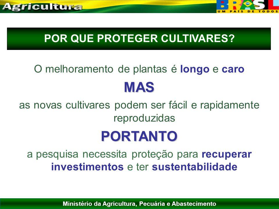 Ministério da Agricultura, Pecuária e Abastecimento O melhoramento de plantas é longo e caroMAS as novas cultivares podem ser fácil e rapidamente repr