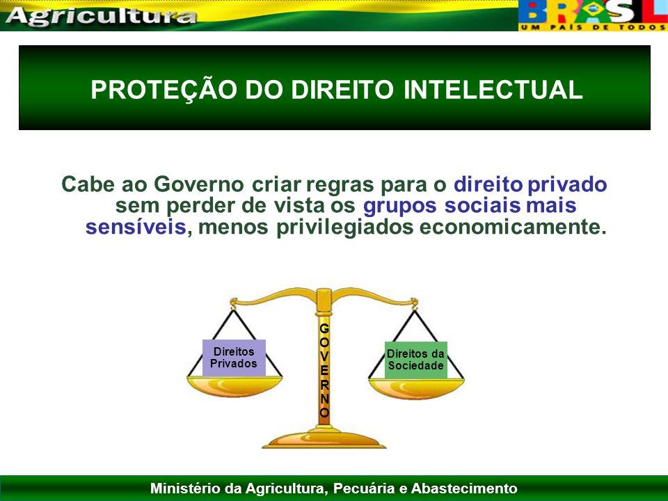 Ministério da Agricultura, Pecuária e Abastecimento PROTEÇÃO DO DIREITO INTELECTUAL Cabe ao Governo criar regras para o direito privado sem perder de