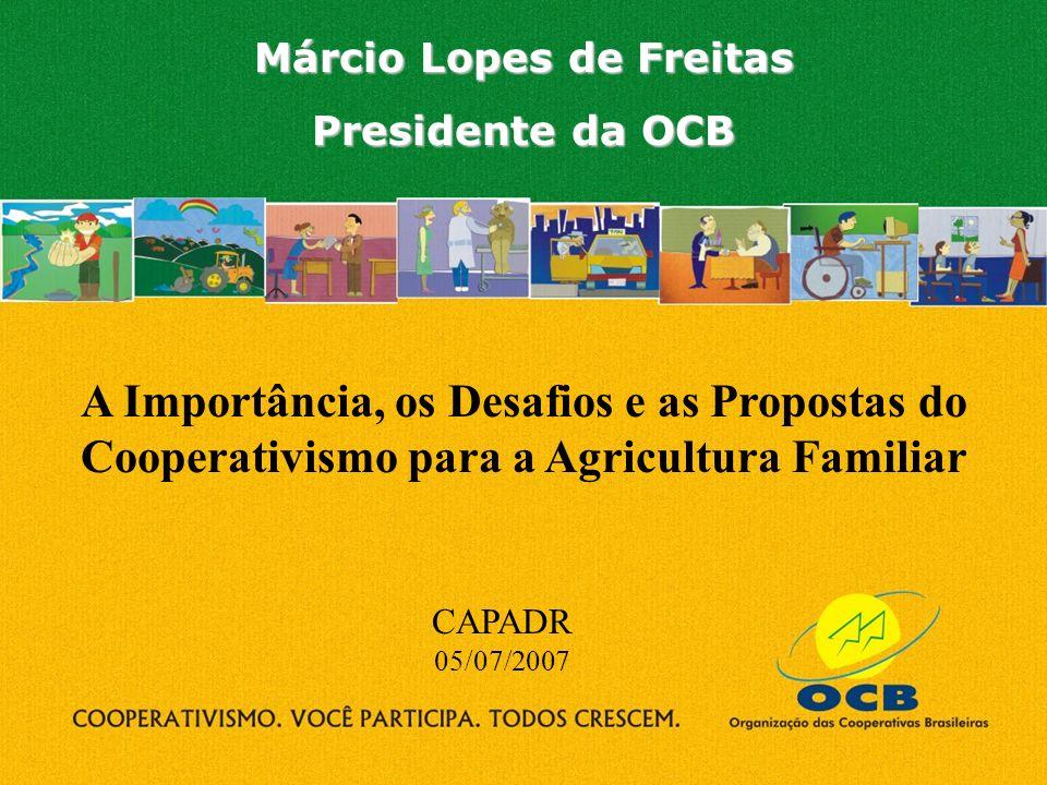 R$ 28,33 bi Caso não houvesse a cooperativa, o produtor: Benefício valor diferencial gerado Importância