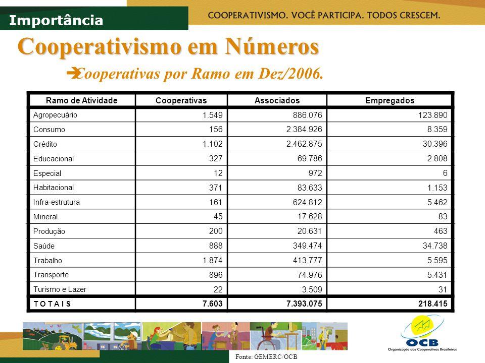 Cooperativismo em Números Cooperativas por Região em Dez/2006. Importância