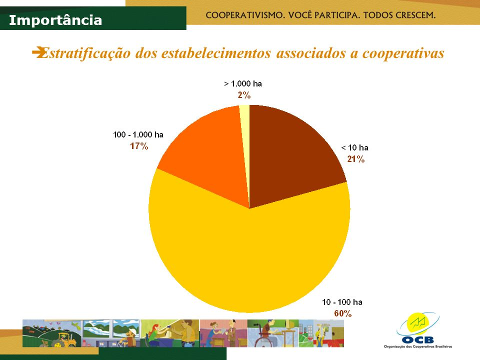 Indicadores do Ramo Agropecuário 1 Benefícios diferenciais gerados pela presença de cooperativa 2 Impostos pagos pelos associados 3 Diferencial de salários Importância