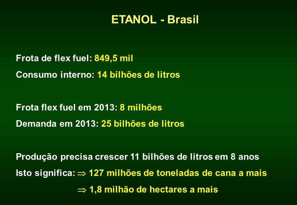 ETANOL - Brasil Frota de flex fuel: 849,5 mil Consumo interno: 14 bilhões de litros Frota flex fuel em 2013: 8 milhões Demanda em 2013: 25 bilhões de