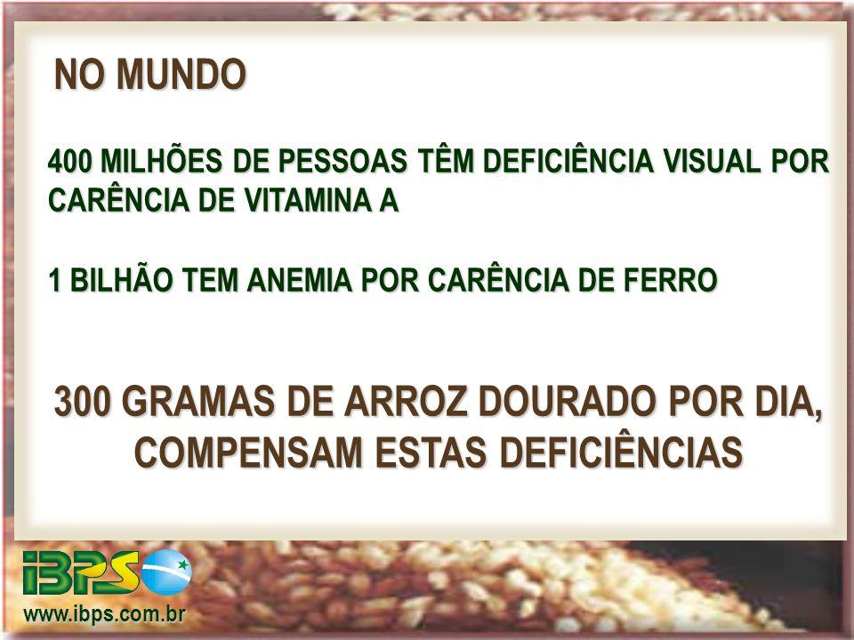 www.ibps.com.br 400 MILHÕES DE PESSOAS TÊM DEFICIÊNCIA VISUAL POR CARÊNCIA DE VITAMINA A 1 BILHÃO TEM ANEMIA POR CARÊNCIA DE FERRO NO MUNDO 300 GRAMAS DE ARROZ DOURADO POR DIA, COMPENSAM ESTAS DEFICIÊNCIAS