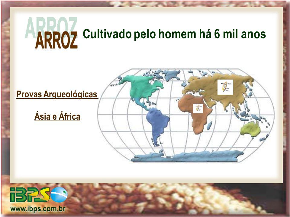Cultivado pelo homem há 6 mil anos www.ibps.com.br Provas Arqueológicas Ásia e África