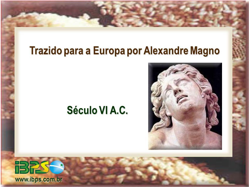 Trazido para a Europa por Alexandre Magno Século VI A.C. www.ibps.com.br