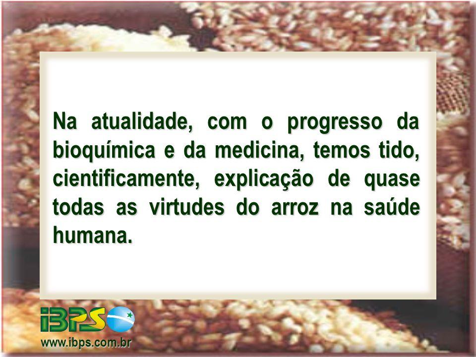 Óleo de Arroz: entre os 4 melhores óleos para alimentação humana (arroz, amendoim, girassol e canola) – não tem colesterol – contém gama-orizanol, anti- oxidante que neutraliza os radicais livres.