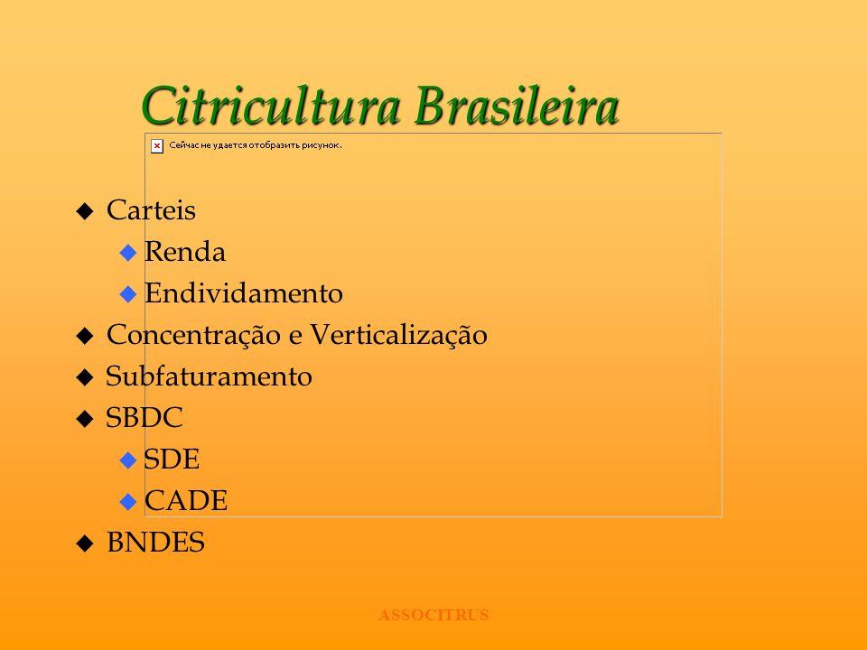 ASSOCITRUS Citricultura Brasileira u Carteis u Renda u Endividamento u Concentração e Verticalização u Subfaturamento u SBDC u SDE u CADE u BNDES