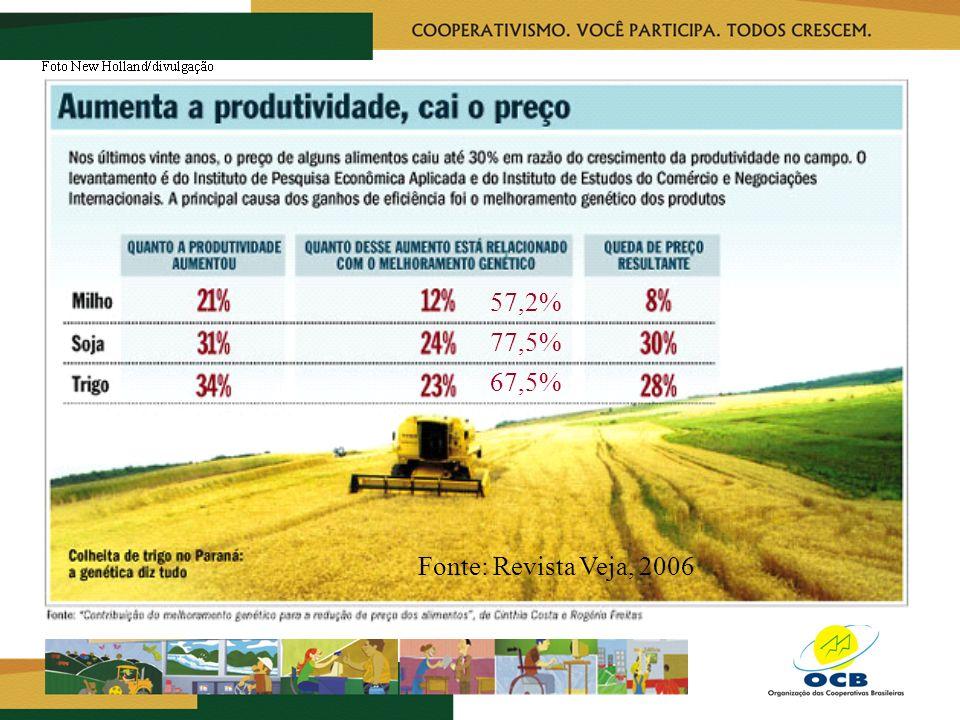 Fonte: Revista Veja, 2006 57,2% 77,5% 67,5%