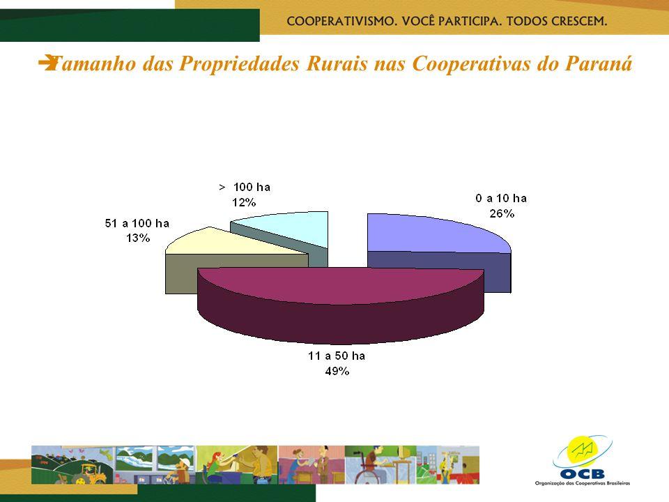 Tamanho das Propriedades Rurais nas Cooperativas do Paraná
