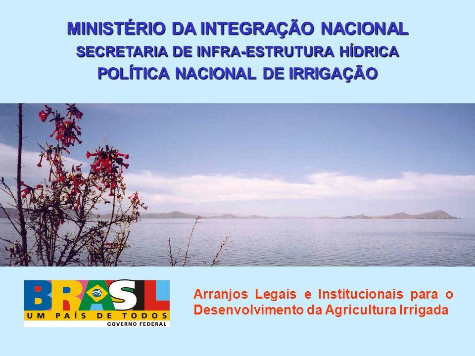 MINISTÉRIO DA INTEGRAÇÃO NACIONAL SECRETARIA DE INFRA-ESTRUTURA HÍDRICA POLÍTICA NACIONAL DE IRRIGAÇÃO Arranjos Legais e Institucionais para o Desenvo