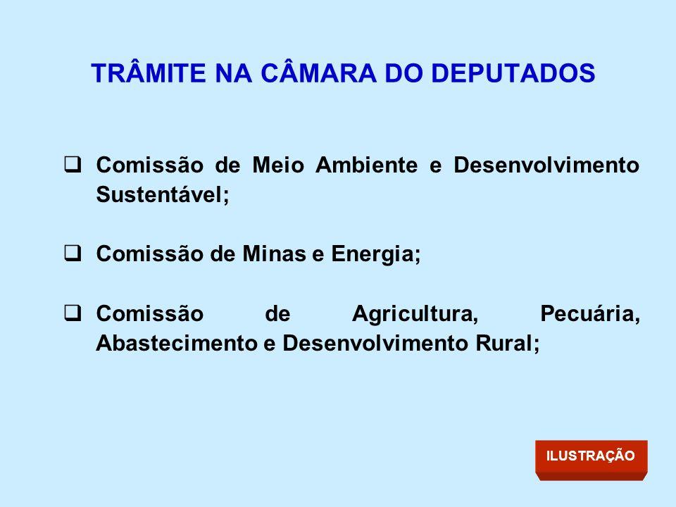 TRÂMITE NA CÂMARA DO DEPUTADOS Comissão de Meio Ambiente e Desenvolvimento Sustentável; Comissão de Minas e Energia; Comissão de Agricultura, Pecuária